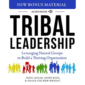Tribal Leadership Audio Book
